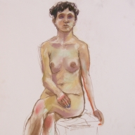 life drawing in pastels on cartridge paper- 'Rosie' 02-03-17